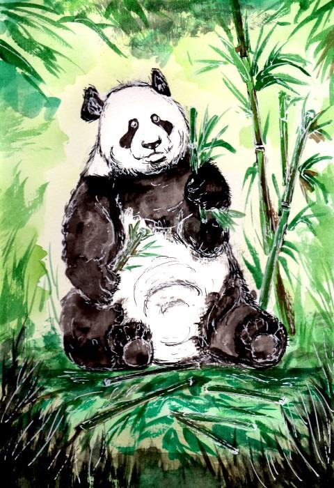Hungy Big Panda - ZeichenbloQ